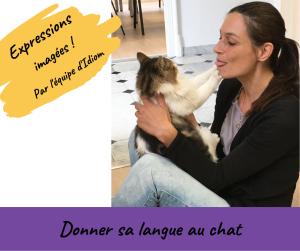 Les expressions imagées d'Idiom – Donner sa langue au chat